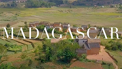 Current Obsessions: Madagascar