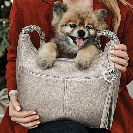Brighton Handbag with a dog