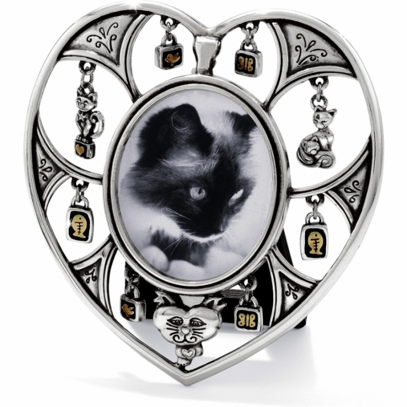 pedigree cat picture frame