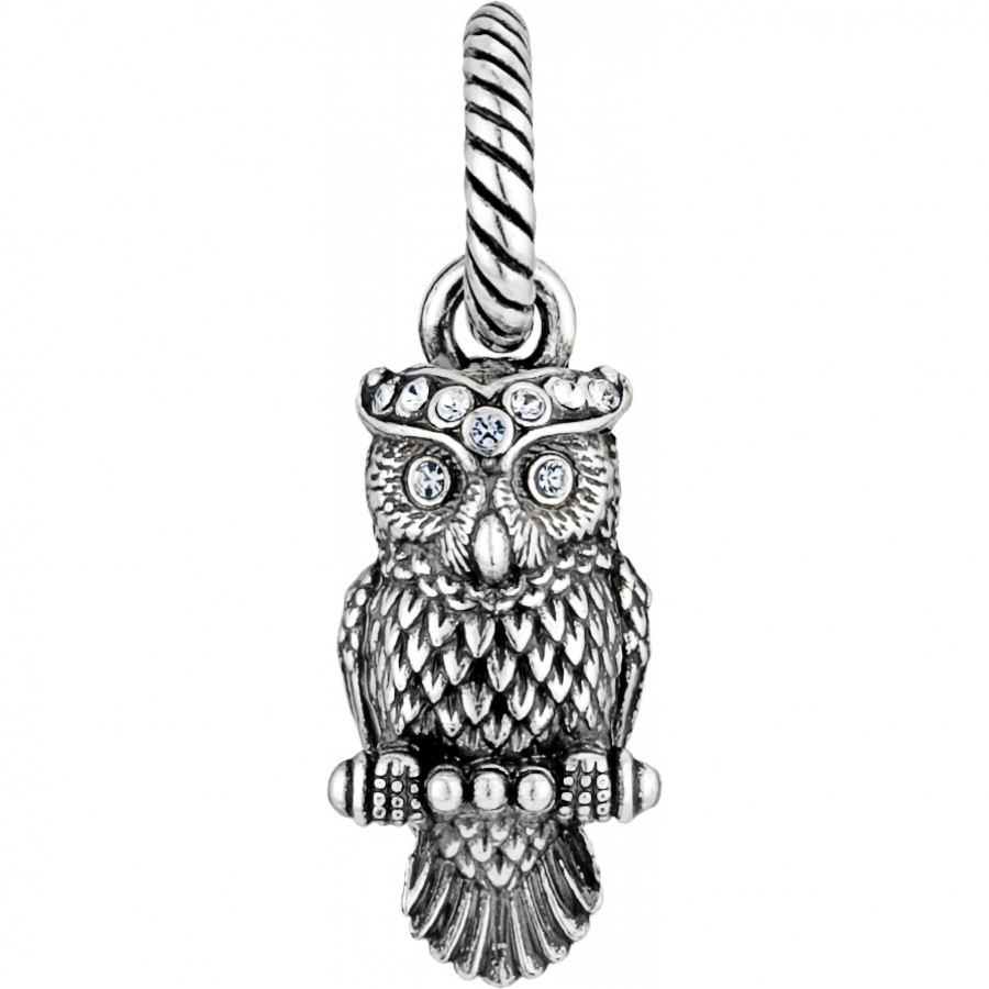 Abc wisdom owl charm charms abc wisdom owl charm aloadofball Image collections
