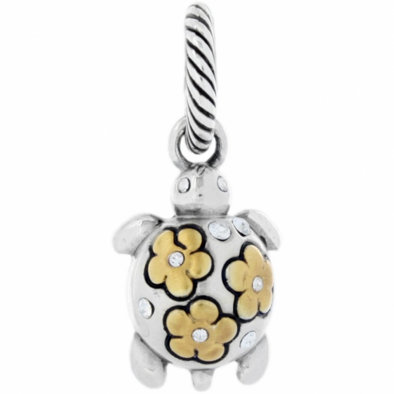 Home charms charms spring shell charm