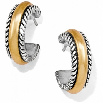 Torus Hoop Earrings