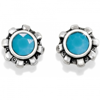 Dazzler Mini Post Earrings