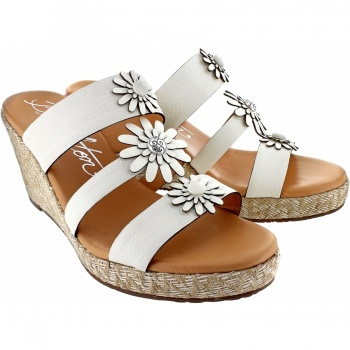 Florabunda Dandy Wedge