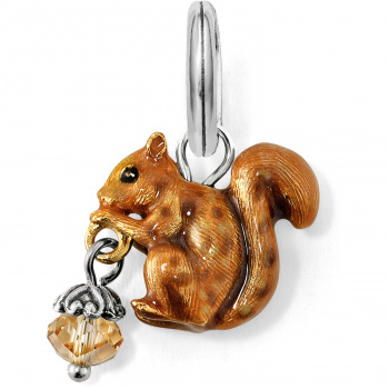 Squirrel Charm