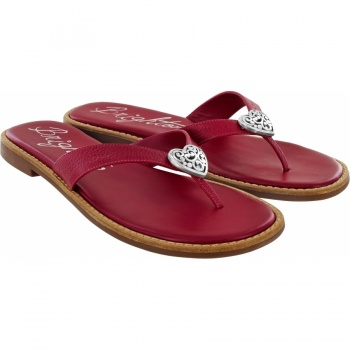 Contempo Orla Thong Sandals