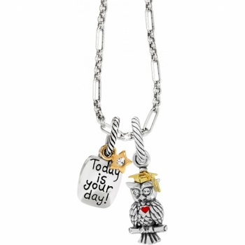 Wise Owl Link Charm Necklace