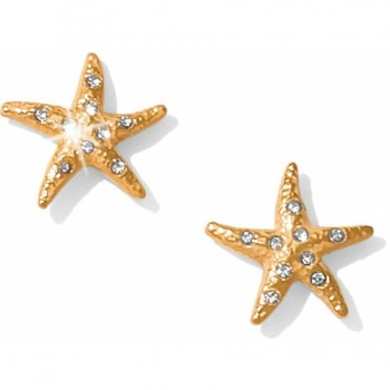 Aqua Shores Starfish Post Earrings