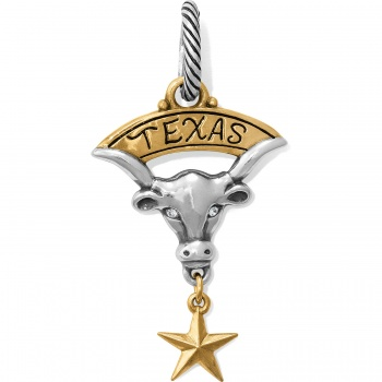 States Texas Longhorn Charm
